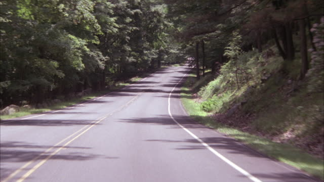 vidéos et rushes de process plate front driver's pov of driving on mountain road. see three men standing on left side of road at beginning. see trees or forest lining road. - route de montagne