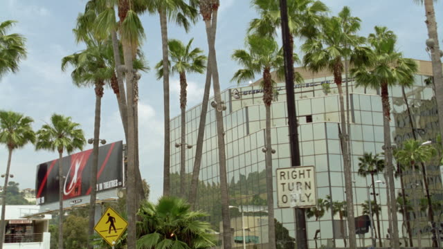 medium angle moving pov of ten story glass office building or hotel with palm trees in foreground. see billboard on left. - palm tree stock videos & royalty-free footage