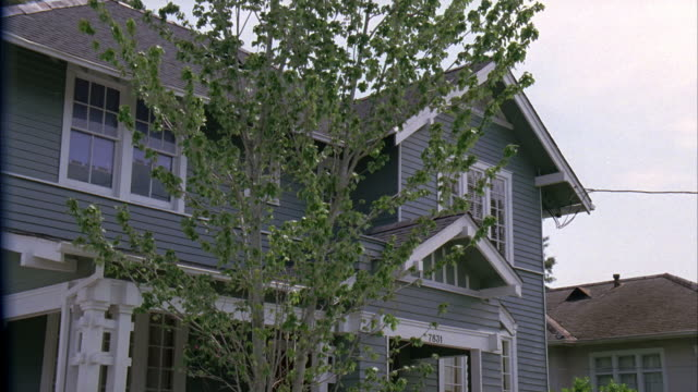 UP ANGLE OF MIDDLE CLASS, TWO STORY HOUSE WITH CLAPBOARD SIDING IN RESIDENTIAL AREA OR NEIGHBORHOOD. TREE. SUBURBS.