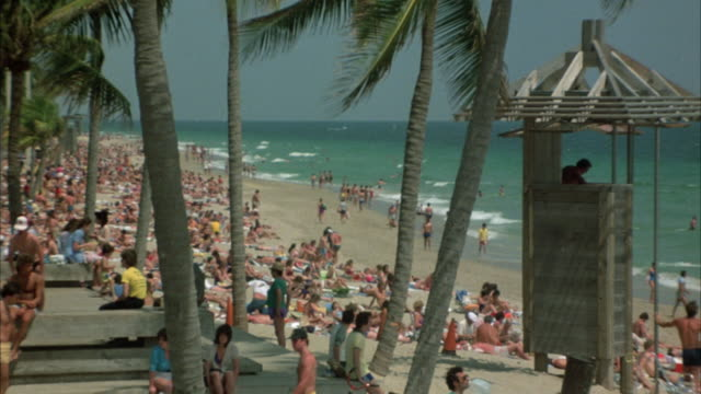 stockvideo's en b-roll-footage met wide angle shot of beach. pov from boardwalk looking out onto beach and ocean. see many people on beach and in water, lifeguard station on right side of shot. shot looks through palm trees on boardwalk. - groothoek