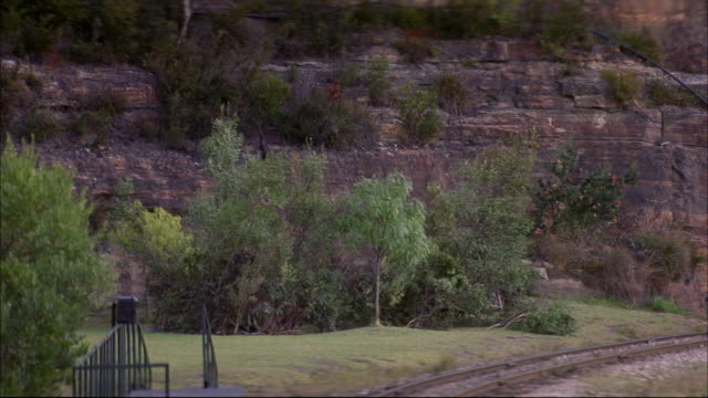 medium angle of gray rock cliff. see green leafy trees and train track in foreground. see steam engine train enter right pov. see three boxcars on train. see train approach and exit pov. - c119gs点の映像素材/bロール