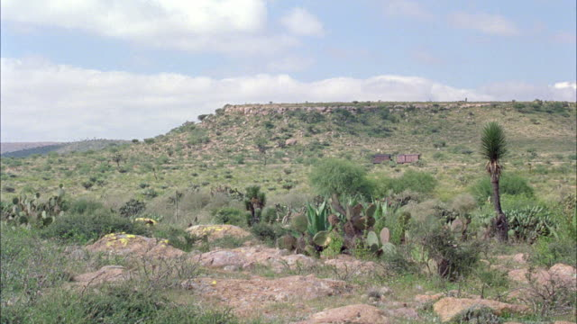 medium angle of desert. see cactus, bushes, or shrubs, and rocks. see red or brown cabin in background. see blue sky with cumulus clouds. - cactus stock videos & royalty-free footage