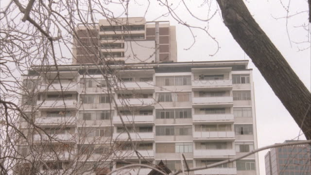 medium angle of fifteen story white apartment building with balconies extending out from structure. see tree branches in foreground. - brick house stock videos and b-roll footage