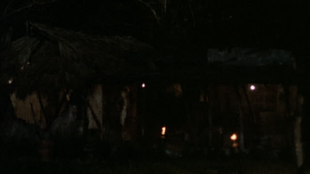 stockvideo's en b-roll-footage met medium angle of grass hut. see tiki torches in front and surrounding trees. fire explosions blow up house, see grass and parts of house fly into air, flames and smoke cover shot. - tiki torch