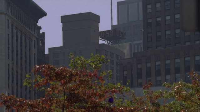 up angle of electric or digital clock and  sign that reads 41*, 9c, 10:50, and 42*. multi-story office buildings on both sides of clock. trees with autumn colored leaves in foreground. - digital clock stock videos and b-roll footage