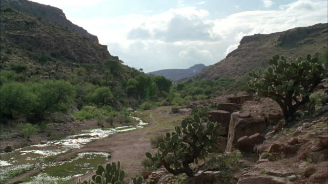 medium angle of small stream of water in small valley or region between two mountains in arid or desert region. see green trees and cacti on ground and blue sky and white clouds above. - valley stock videos & royalty-free footage