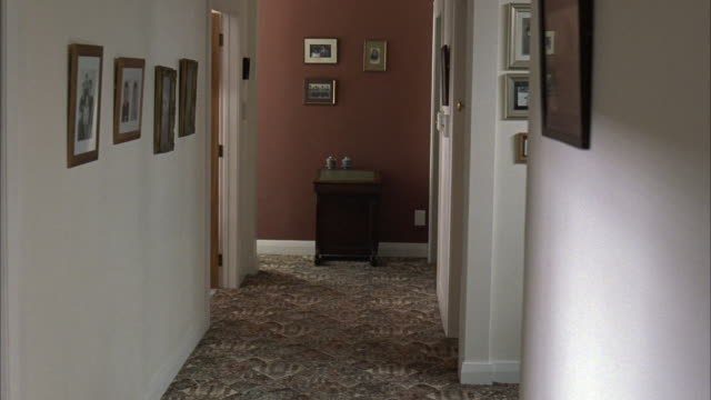 medium angle of middle class suburban home hallway with patterned carpet, photographs on walls. small dog scampers up hall. - interior stock videos & royalty-free footage