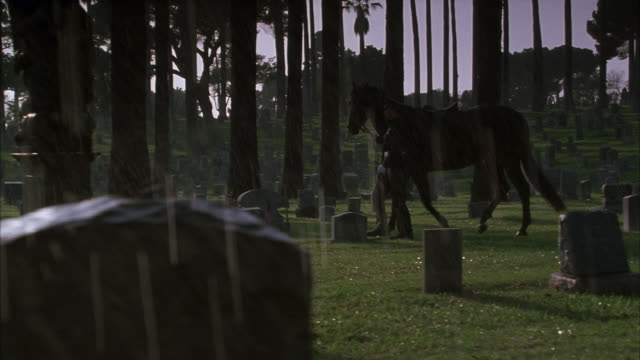 pan right to left. see man dressed in uniform leading a brown horse by harness through cemetery. walks out frame left. man playing bagpipes in cemetery. raining heavily. shot at 40 fps slow motion. - animal harness stock videos and b-roll footage