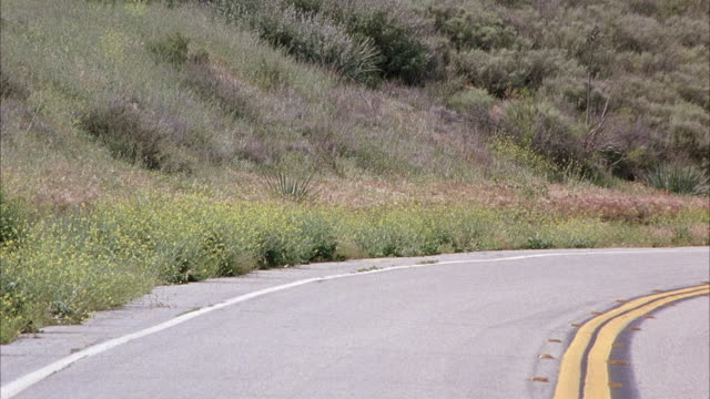 medium angle of empty highway road next to field of wildflowers. motorcycle gang drives into shot from right to left. leader of gang waves and blows a kiss to the camera. - motorradfahrer stock-videos und b-roll-filmmaterial