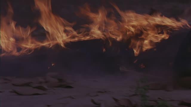 medium angle of man in blue coveralls on fire, burning man dragged kicking and flailing through leaves on street. stunt. flames. neg cut. - 離れ技点の映像素材/bロール