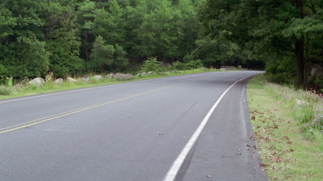 MEDIUM ANGLE LOOKING DOWN TWO LANE ROAD THAT CURVES TO THE RIGHT BEHIND TREES IN DISTANCE. SEE TREES LINING BOTH SIDES OF ROAD. SEE GREEN SEDAN CAR DRIVE BY, ENTERING ON LEFT AND EXITING AROUND CORNER.