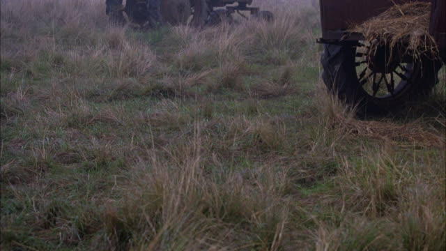pan up to farm equipment in an overgrown field.  an old red tractor sits in the white fog.  a truck with old fashioned wheels parked with some hay in the back. crops, farmland, trees. - hay truck stock videos & royalty-free footage
