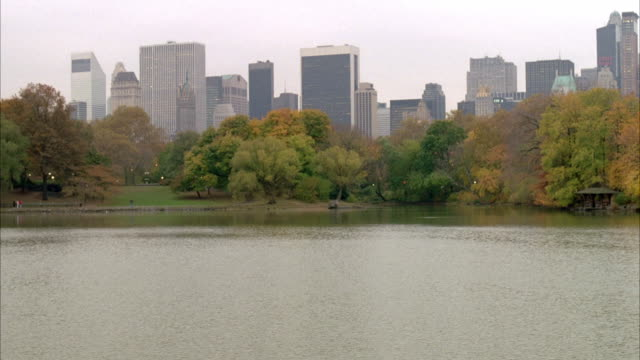 stockvideo's en b-roll-footage met wide angle of midtown manhattan, new york city skyline. pov from lake in central park. trees with autumn leaves line shore. skyscrapers, office buildings. - 1996