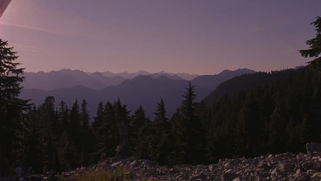 wide angle of mountain wilderness. see mountain ranges, pine tree forests, rocky hillside, blue sky, tree stump. could be rocky mountains. see men clearing rocks in bottom left of frame. nature. - pine stock videos and b-roll footage