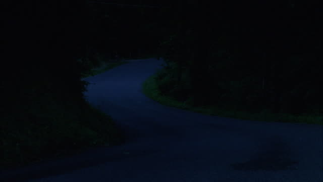 MEDIUM ANGLE OF WINDING COUNTRY ROAD WITH DENSE TREES ON BOTH SIDES. SEE BMW EIGHT SERIES APPEAR FROM AROUND CORNER IN DISTANCE AND EXIT ON ROAD TO RIGHT OF CAMERA. SEE RED SAAB CONVERTIBLE FOLLOW SHORTLY AFTER BMW LEAVES SCREEN.
