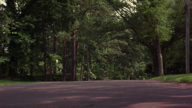 MEDIUM ANGLE OF TWO LANE COUNTRY ROAD. SEE ARCHED CANOPY OVER ROAD CREATED BY TALL NONCONIFEROUS TREES FLANKING ROAD. SEE BLACK 1993 CADILLAC FLEETWOOD SWERVE BACK AND FORTH AS IT DRIVES TOWARDS CAMERA AND OFF LEFT.