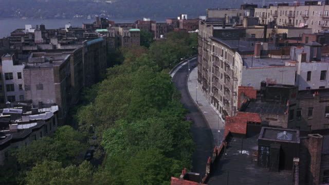 stockvideo's en b-roll-footage met high angle down of riverside drive in upper westside manhattan. see green nonconiferous trees on left. see hudson river in background. - 1990 1999