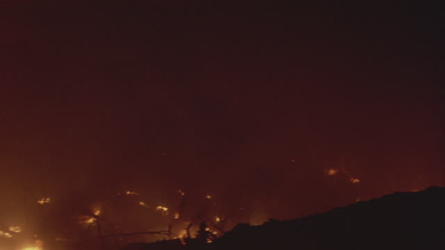 HAND HELD OF FOREST FIRE, COULD BE SEARCHING FOR SOMEONE OR SOMETHING. PROBABLY AFTERMATH OF FIRE. TREES ARE DESTROYED.
