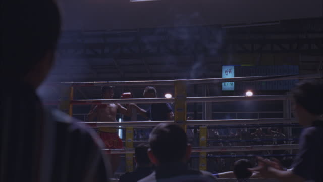 medium angle of men in boxing ring from audience pov. audience members in foreground pumping fists in air. boxer wearing boxing gloves stands in ring. referee holds boxer's hand up to declare him the winner. - boxing ring stock videos and b-roll footage