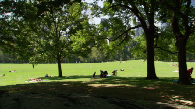vidéos et rushes de medium angle of lawn in central park. see green leafy trees in foreground. see people sitting, having picnics and relaxing on grass. see lower manhattan skyscrpaers in background. - pique nique