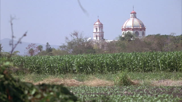 wide angle of spanish colonial style church steeple seen over cornfield in distance. pan to trees in foreground. - steeple stock videos & royalty-free footage