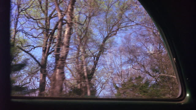 medium angle of landscape of deciduous and coniferous trees from inside moving vehicle. see street signs through car window. - deciduous stock videos & royalty-free footage
