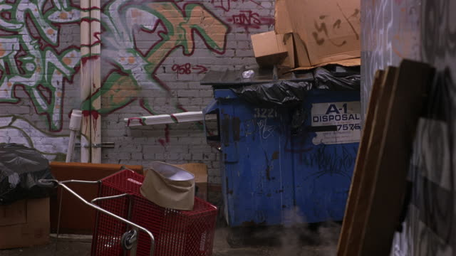 WIDE ANGLE OF BRICK ALLEY WITH GRAFFITI. GARBAGE DUMPSTER OVERSTUFFED WITH PLASTIC TRASH BAGS AND TOPPED WITH TRASHED CARDBOARD BOXES.