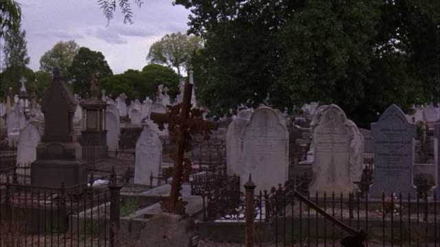 WIDE ANGLE OF GRAVES AND HEADSTONES IN NEGLECTED PART OF MELBOURNE GENERAL CEMETERY. WORN TOMBSTONES ARE VICTORIAN ERA, MANY FEATURING CROSSES. SEVERAL GRAVES ARE ENCLOSED IN WROUGHT IRON FENCES.