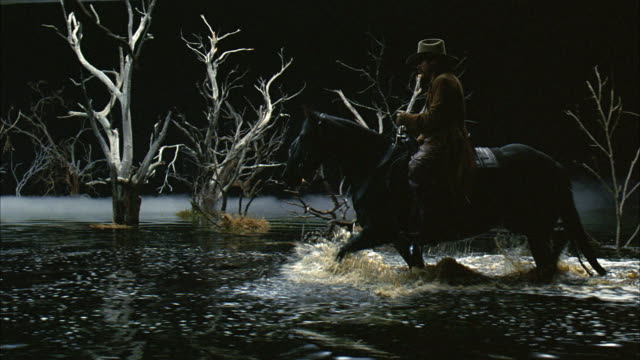 tracing shot follows man on horse riding through murky swamp or pond with bare trees, branches and fog. man wears cowboy hat and long jacket. could be cowboy. background is black. - sumpf stock-videos und b-roll-filmmaterial