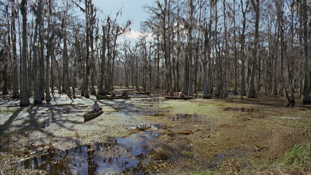 vídeos de stock e filmes b-roll de wide angle of swamp land, water with leaves floating, men in boats or canoes. autumn. plants, bare trees.additional footage in clip 3001-004. for full clip call sony pictures stock footage. - luisiana