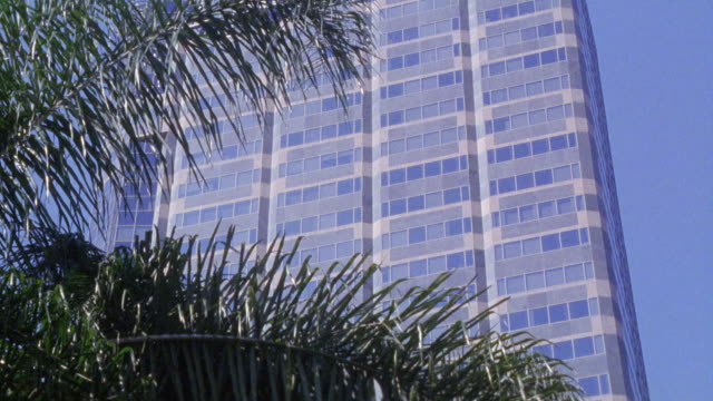 up angle of skyscraper aig sunamerica center, office building, in century city. palm trees visible in fg. glass buildings. - century city stock videos & royalty-free footage