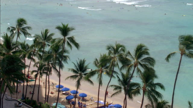 pan up of waikiki beach in hawaii. people walk along sand near umbrellas and palm trees. surfing and swimming in ocean waves. - oahu stock videos and b-roll footage