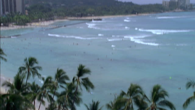 pan up of waikiki beach in hawaii. people walk along sand near umbrellas and palm trees. surfing and swimming in ocean waves. - insel oahu stock-videos und b-roll-filmmaterial