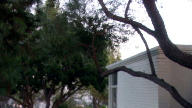 medium angle of clothes being thrown around in yard next to small one story white brick house. articles of clothing are thrown by someone off-screen into the yard. could be break-up or divorce. trees. - brick house stock videos & royalty-free footage