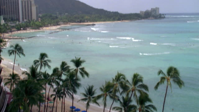 pan down of waikiki beach in hawaii. people walk along sand near umbrellas and palm trees. surfing and swimming in ocean waves. - oahu stock videos and b-roll footage