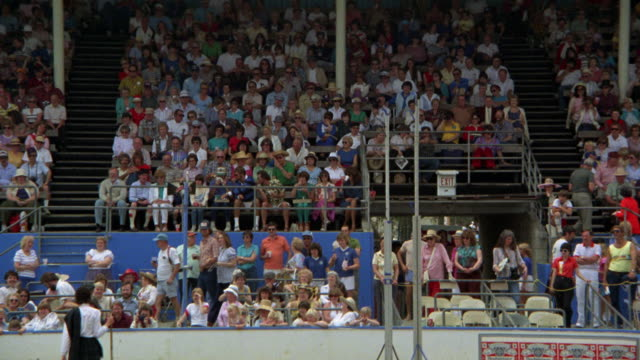 highland games    ls pov from field to crowd in stadium stands crowds bleachers dogs in fg - weitwinkel stock-videos und b-roll-filmmaterial