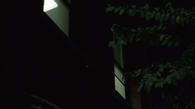 up angle of a window of a brick building or apartment building with a tree next to it. - middle class stock videos & royalty-free footage