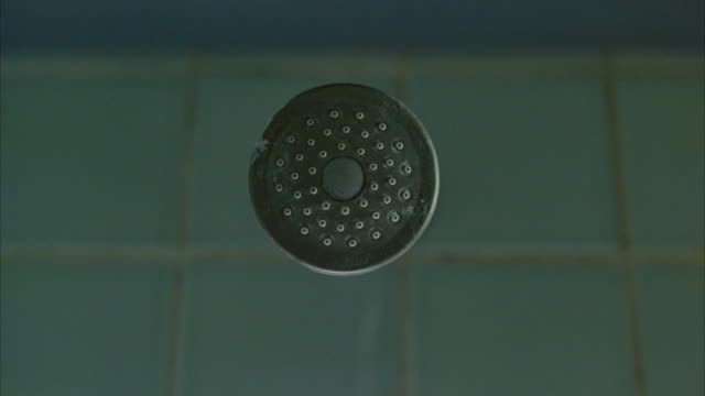 vídeos de stock, filmes e b-roll de close angle of shower head in blue tile shower. water is turned on and sprays out of shower head. 40 fps. - tomar banho