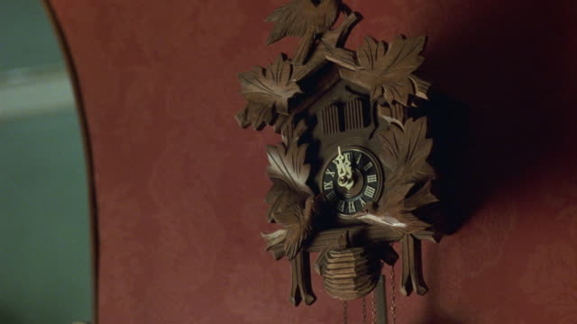 medium angle establish of wooden cuckoo clock on red wall. see time set to 12:00. see doors at top of clock open, see small bird come out of doors. see other wooden birds at bottom of clock rock back and forth. - cuckoo stock videos and b-roll footage