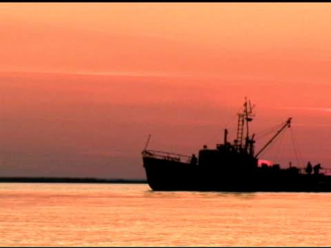 vídeos de stock e filmes b-roll de navio pesqueiro (dv - peixe fresco