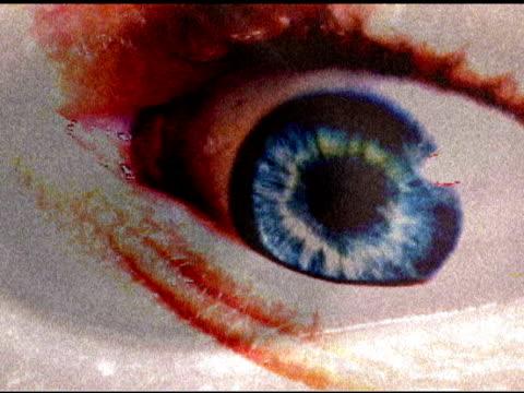 vídeos de stock, filmes e b-roll de pânico (dv) olhos - percepção sensorial