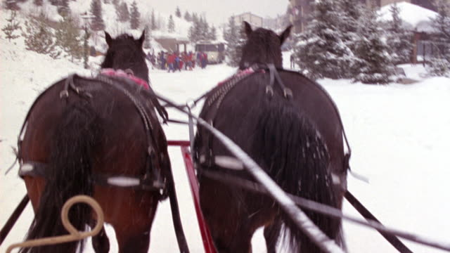 medium angle from pov of riding horse drawn carriage. driver's pov. see rear ends of two horses as they walk through ski resort. see lodging on both sides and people walking in snow in their snow gear. - kutsche stock-videos und b-roll-filmmaterial
