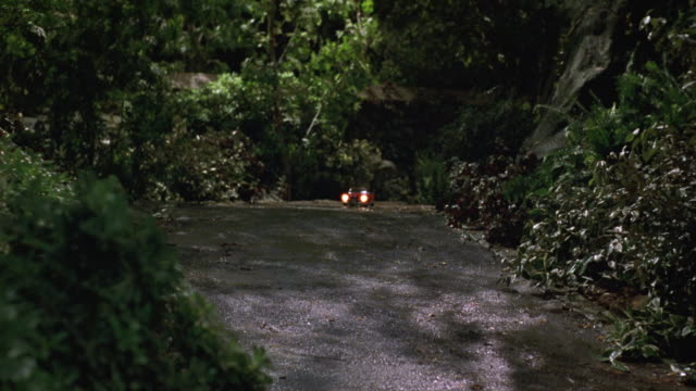 medium angle of paved path or driveway. see bushes and shrubs lining either side of path. - ラジコン点の映像素材/bロール
