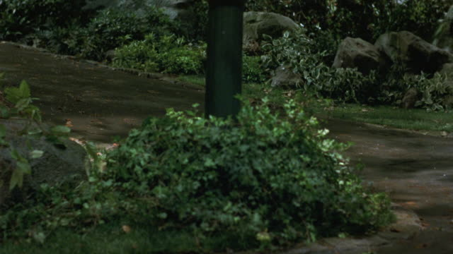 medium angle of paved path or driveway. see bushes and shrubs lining either side of path. see rocks in background. - ラジコン点の映像素材/bロール
