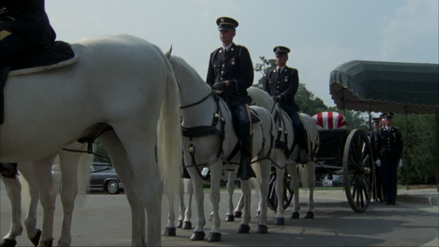 medium angle of caisson being pulled by three pairs of white horses with eight soldiers walking on either side of carriage. - funeral procession stock videos & royalty-free footage