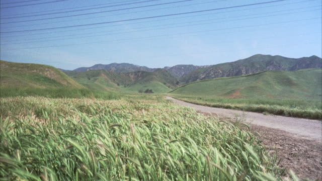medium angle of field of fox tails or tall grass. see dirt road running through field with rolling hills and mountains in background. - hill stock videos & royalty-free footage