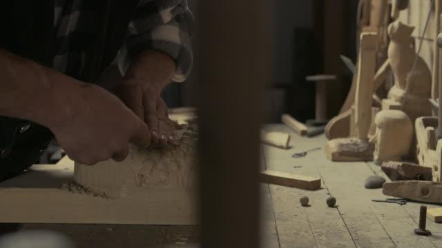 vídeos y material grabado en eventos de stock de artista de madera - pinaceae