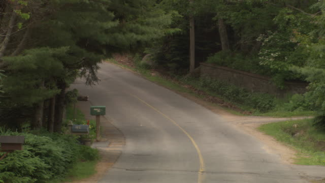 medium angle of small two-lane road in rural or forest area. see solid green trees, bushes, and shrubs on either side of road. - letterbox stock videos & royalty-free footage