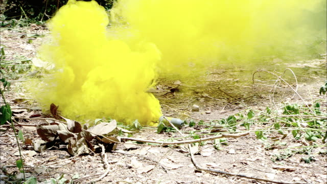 close angle of yellow smoke pouring from a smoke grenade in jungle or forest. trees and foliage in background. likely military. - hand grenade stock videos & royalty-free footage
