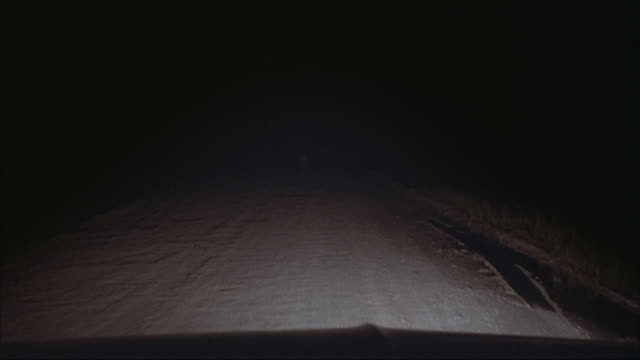 MEDIUM ANGLE POV IN CAR LOOKING FORWARD OVER HOOD. SEE HEADLIGHTS LIGHTING UP DIRT ROAD. SEE BUCK DEER IN CENTER OF ROAD. CAR CHASES AFTER DEER AS IT RUNS AWAY DOWN ROAD.
